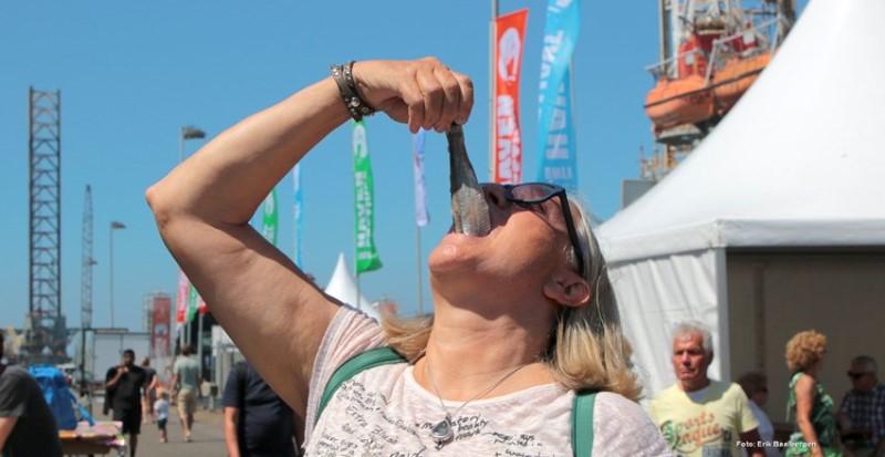 havenfestival-ijmuiden1