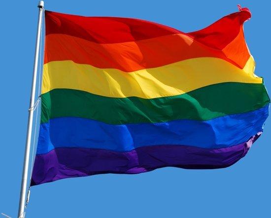 regenboogvlaglgbt